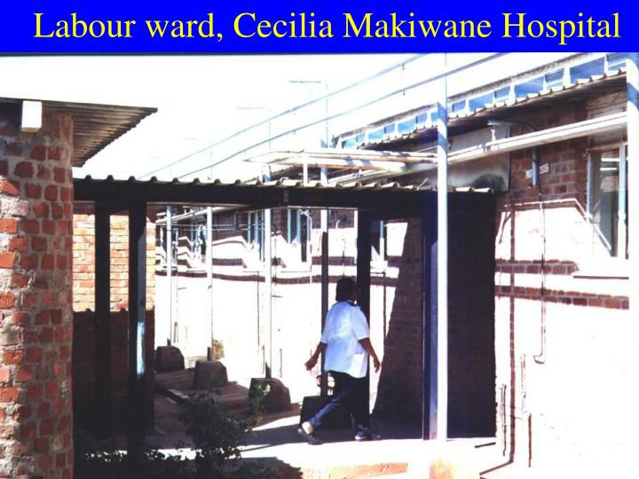 Labour ward, Cecilia Makiwane Hospital