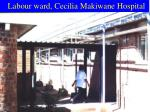 labour ward cecilia makiwane hospital