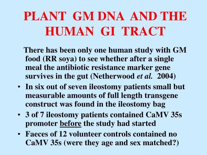 PLANT  GM DNA  AND THE  HUMAN  GI  TRACT