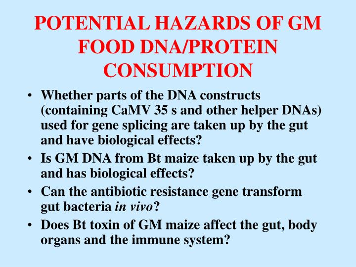 POTENTIAL HAZARDS OF GM FOOD DNA/PROTEIN CONSUMPTION