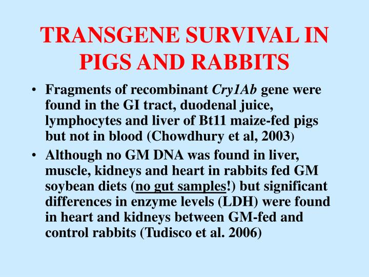 TRANSGENE SURVIVAL IN PIGS AND RABBITS