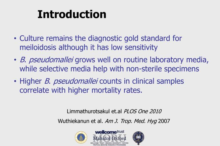 Culture remains the diagnostic gold standard for meiloidosis although it has low sensitivity
