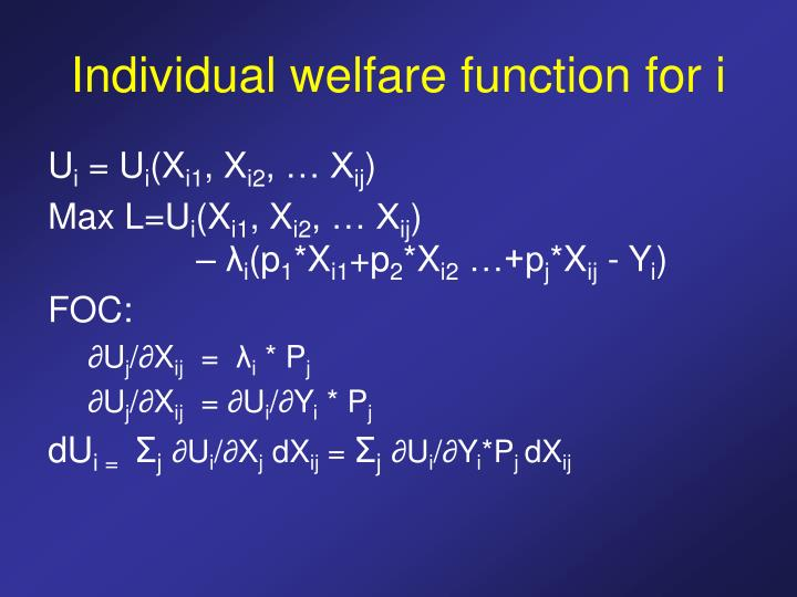 Individual welfare function for i