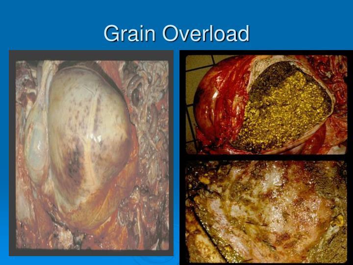 Grain Overload
