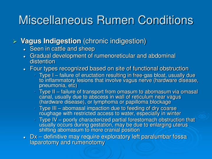 Miscellaneous Rumen Conditions