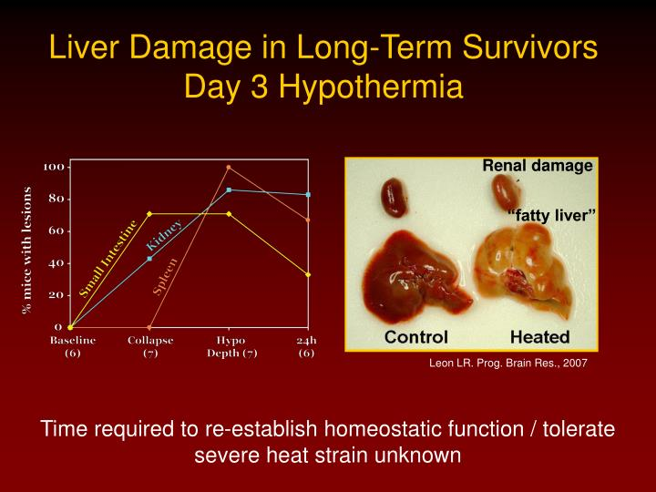 Liver Damage in Long-Term Survivors