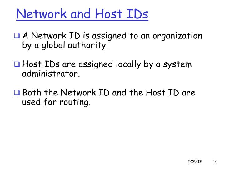 Network and Host IDs