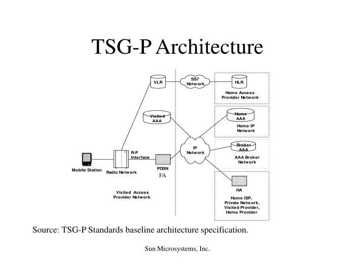 TSG-P Architecture