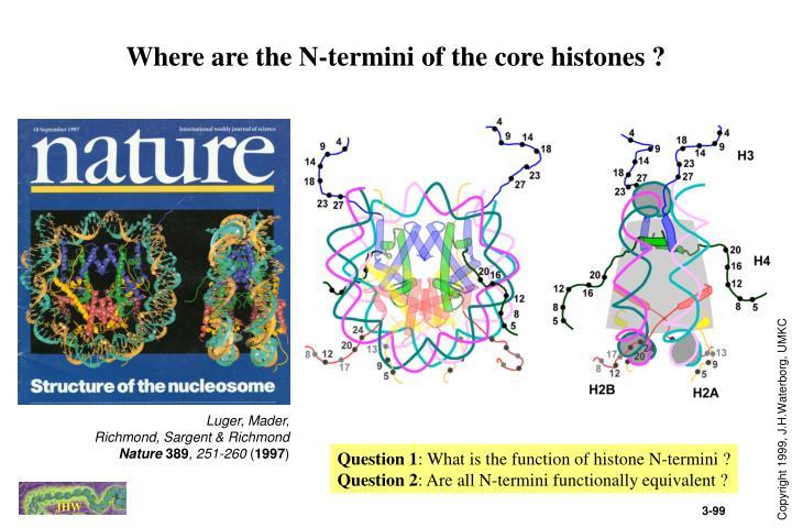 Where are the N-termini of the core histones ?