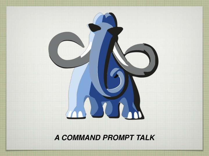 A COMMAND PROMPT TALK
