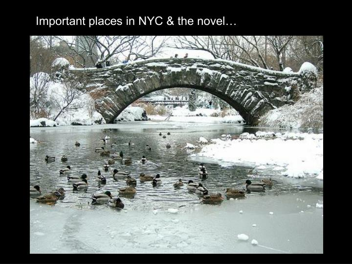 Important places in NYC & the novel…