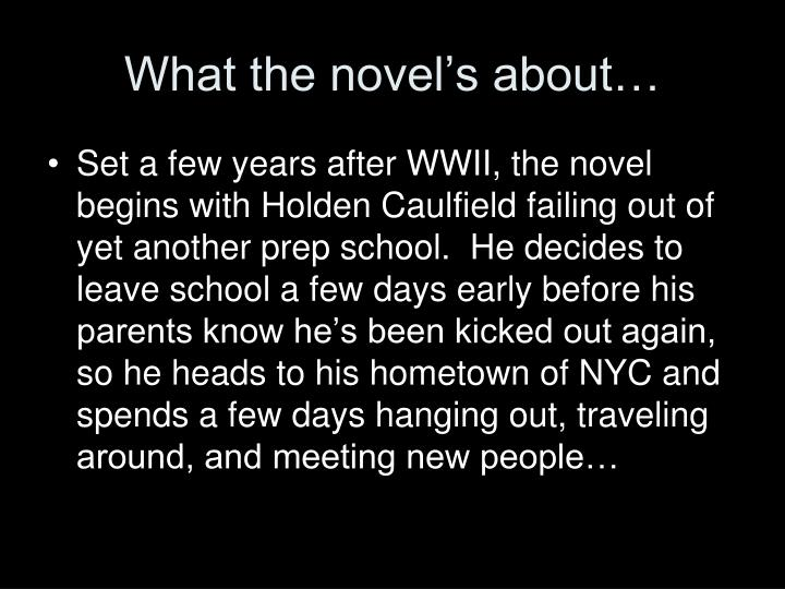 What the novel's about…