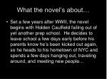 what the novel s about