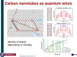 carbon n anotubes as quantum wires