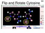 flip and rotate cytosine