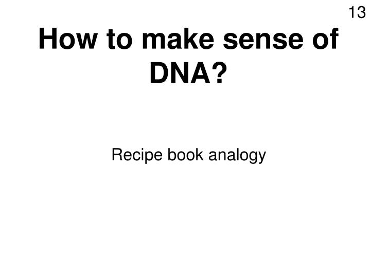 How to make sense of DNA?