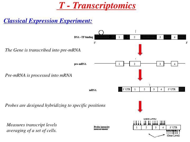 T - Transcriptomics