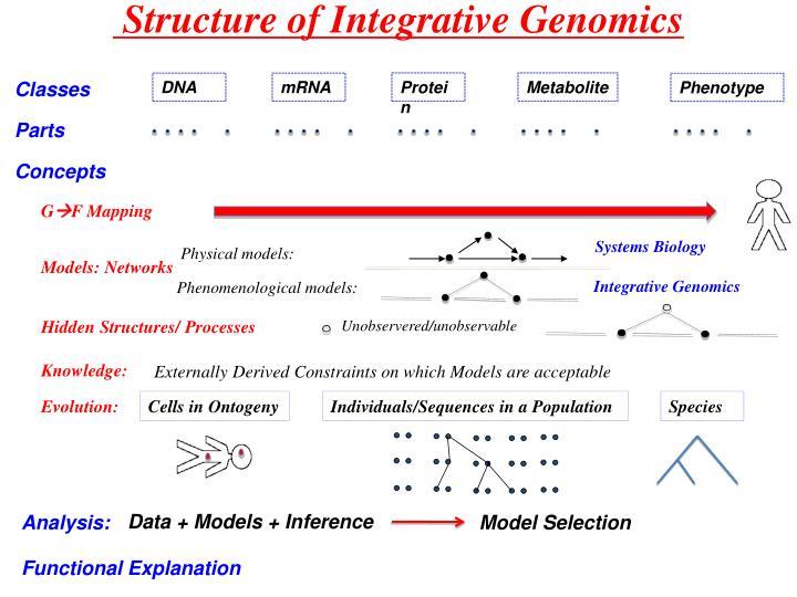 Structure of Integrative Genomics
