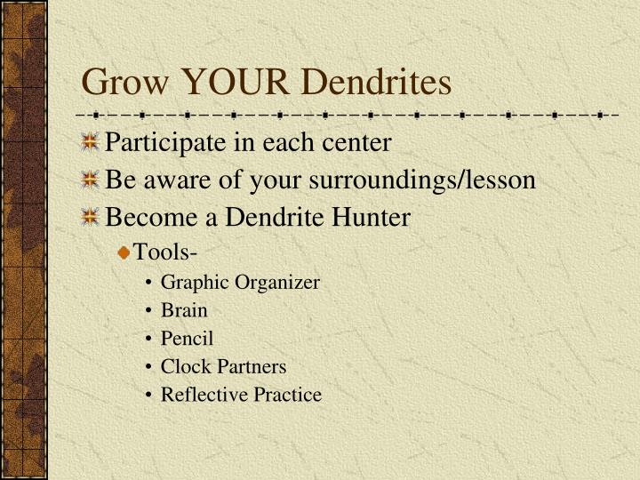 Grow YOUR Dendrites