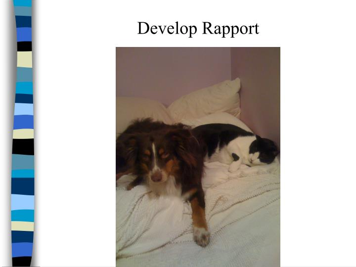 Develop Rapport