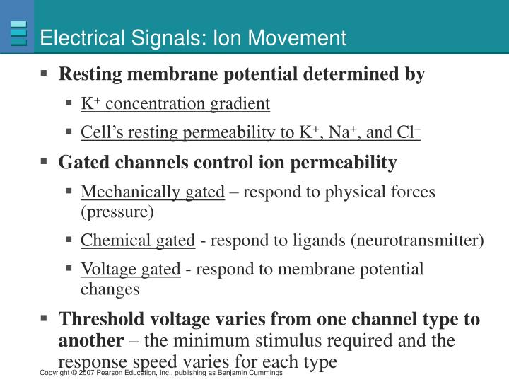 Electrical Signals: Ion Movement
