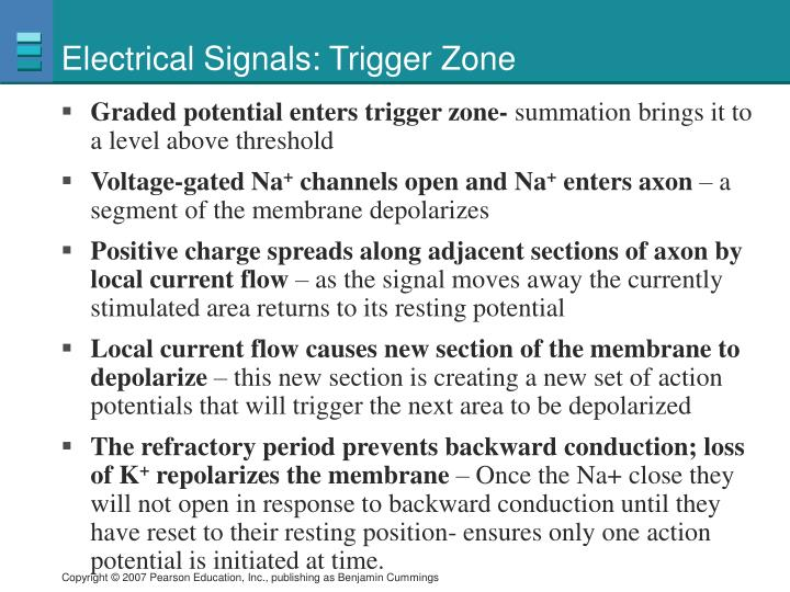 Electrical Signals: Trigger Zone
