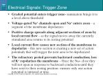 electrical signals trigger zone