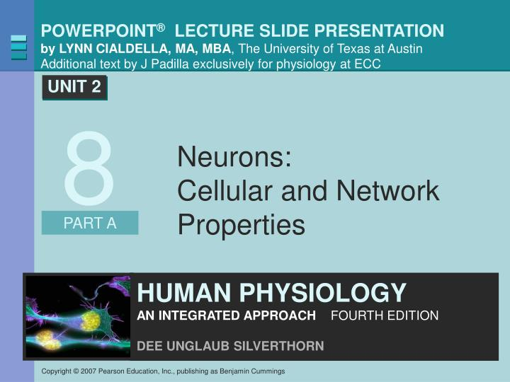 Neurons cellular and network properties