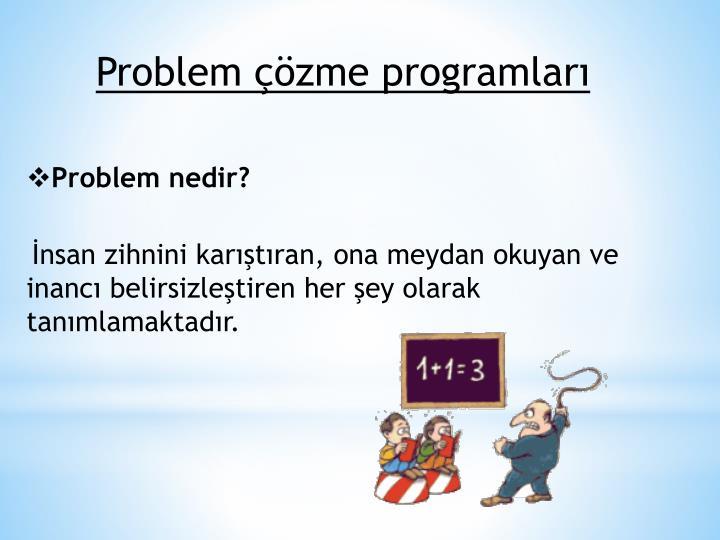 Problem çözme programları