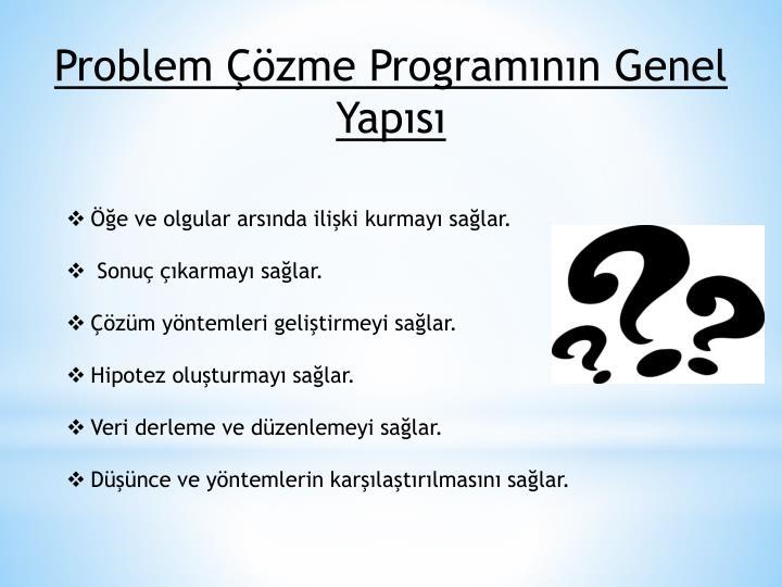 Problem Çözme Programının Genel Yapısı