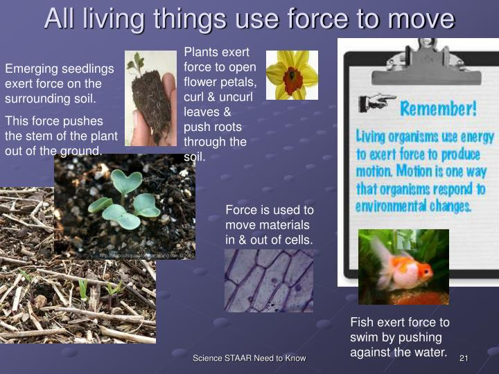 All living things use force to move