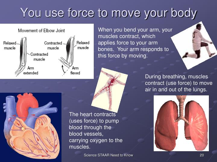 You use force to move your body