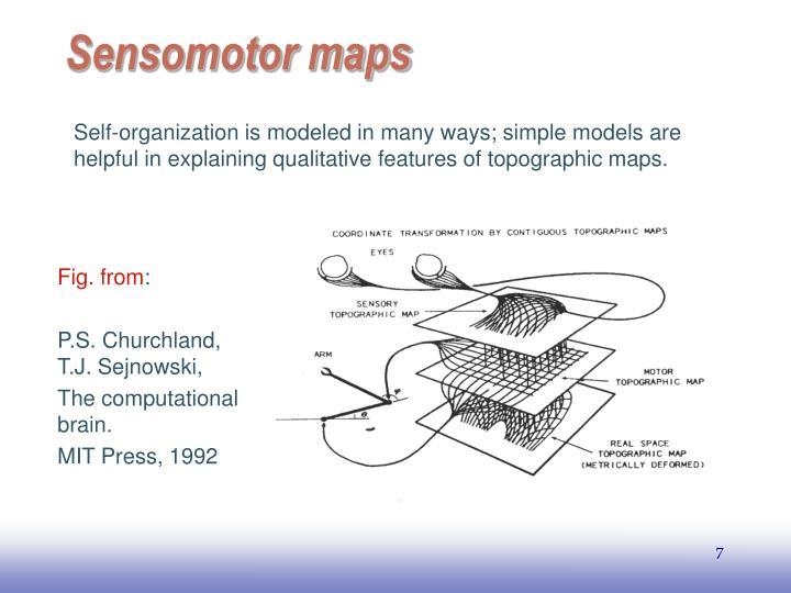 Sensomotor maps