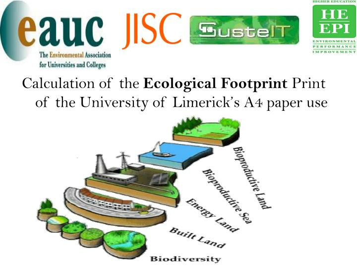 Essay on Ecological Footprint Your Term Papers Free