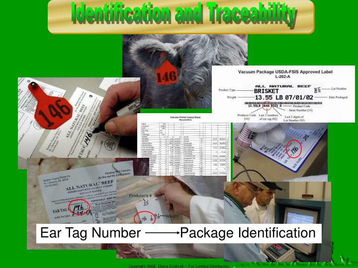 Identification and Traceability