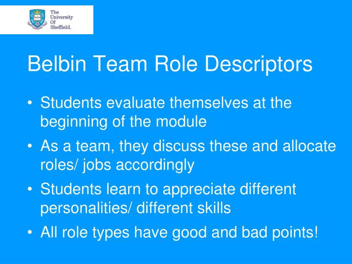 Belbin Team Role Descriptors
