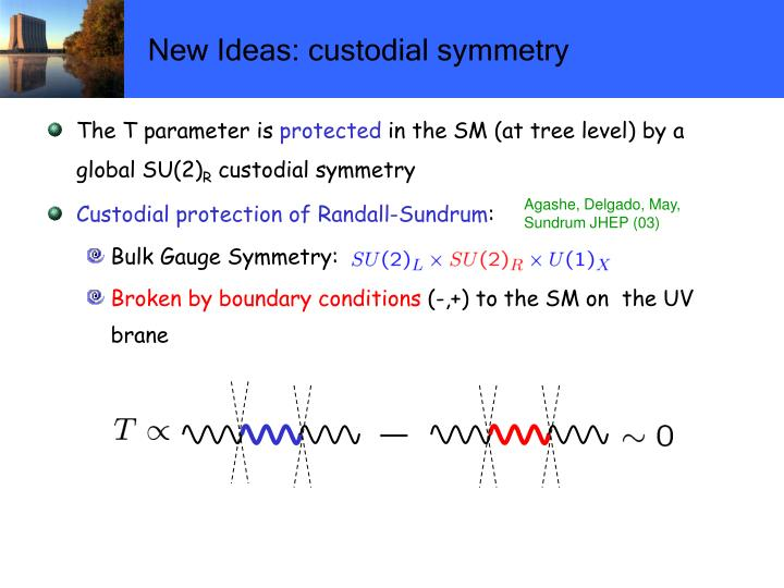 New Ideas: custodial symmetry