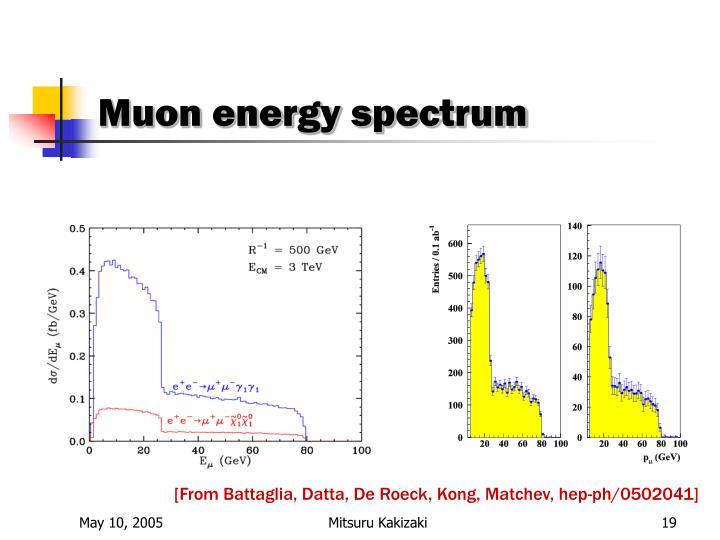 Muon energy spectrum
