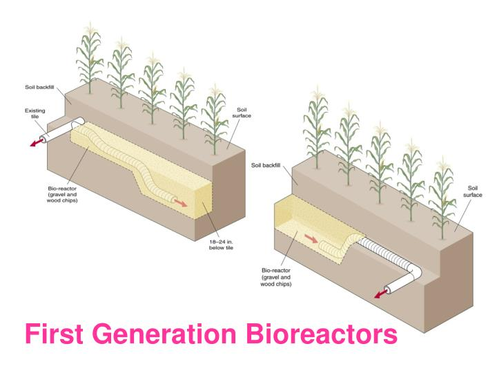 First Generation Bioreactors