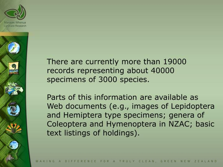 There are currently more than 19000 records representing about 40000 specimens of 3000 species.