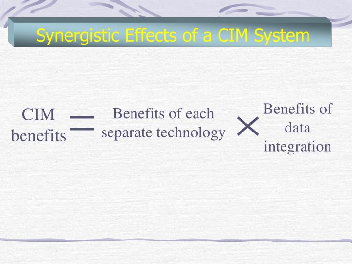 Synergistic Effects of a CIM System