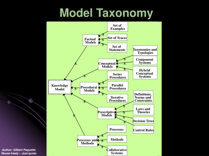 Model Taxonomy