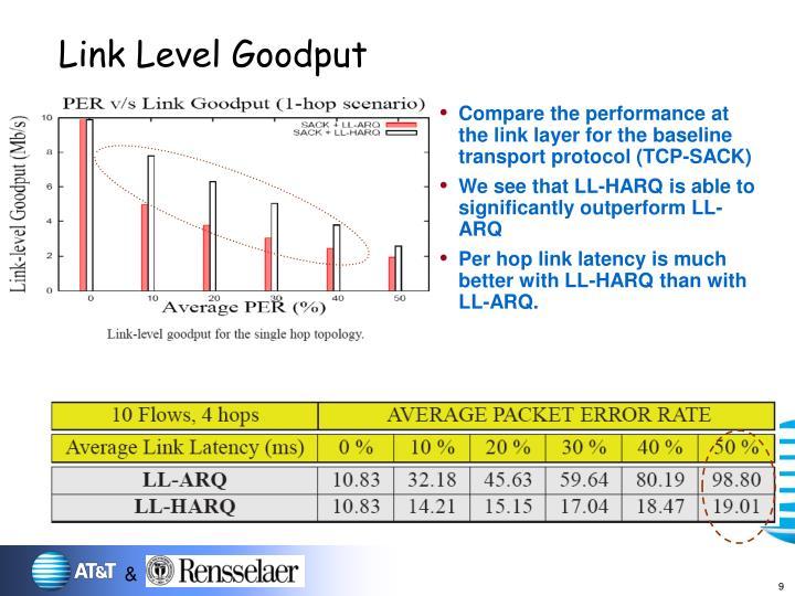 Link Level Goodput