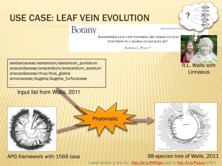 USE CASE: LEAF VEIN EVOLUTION