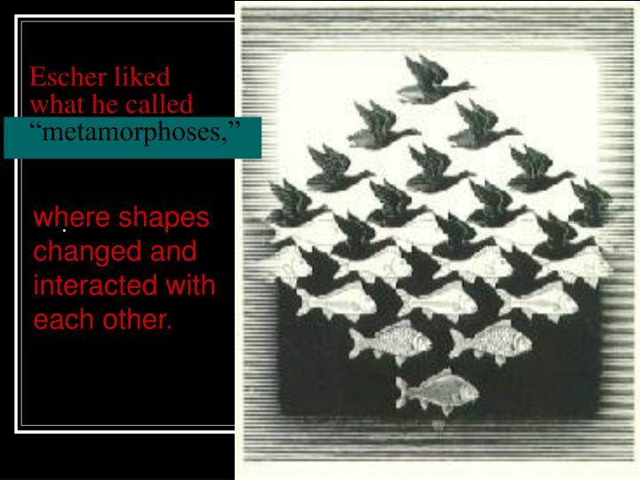 Escher liked