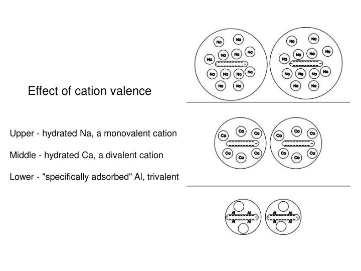 Effect of cation valence