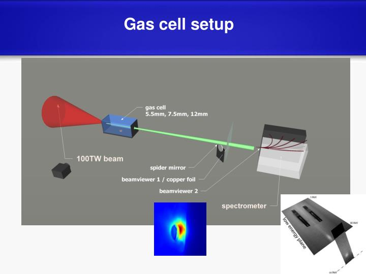 Gas cell setup