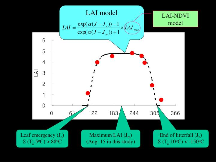 LAI model