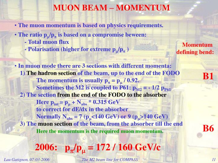 MUON BEAM – MOMENTUM