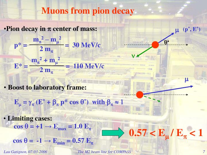 Muons from pion decay